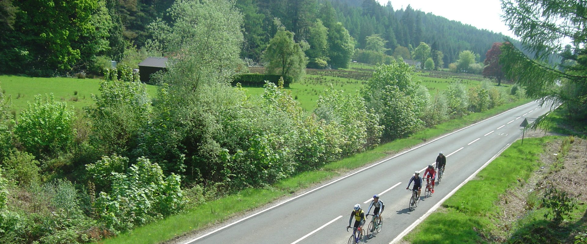 Cyclists on a road