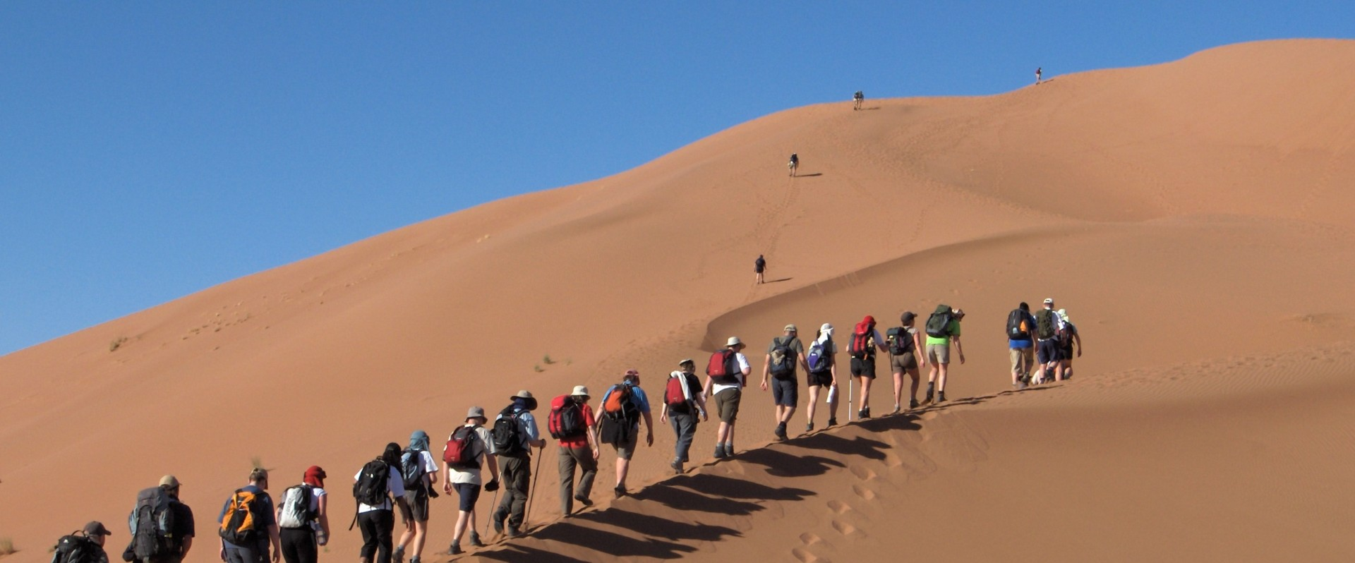 People trekking across the Sahara Desert