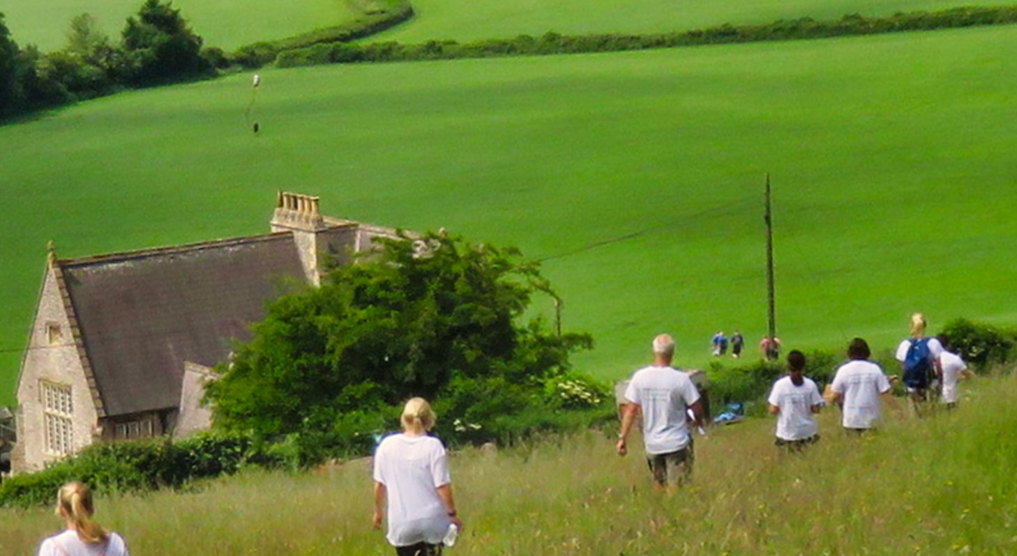 People walking across a sunny field