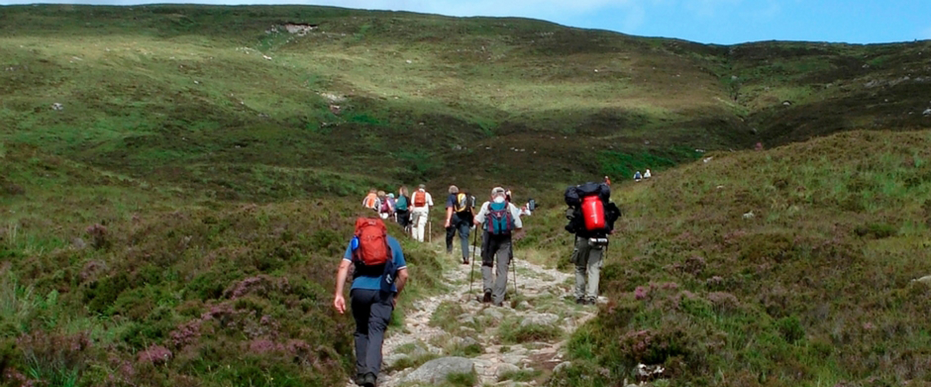 Group of people walking up a hill